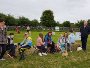 dogshow :: Shrule and District Vintage Club